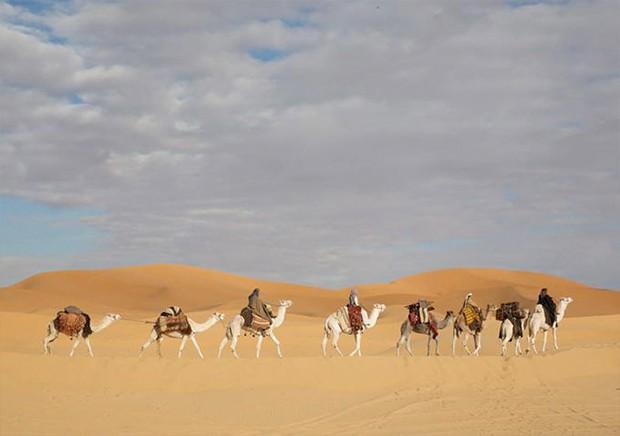 queen-of-the-desert-pics_07