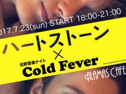 hjartasteinn-cold-fever_00