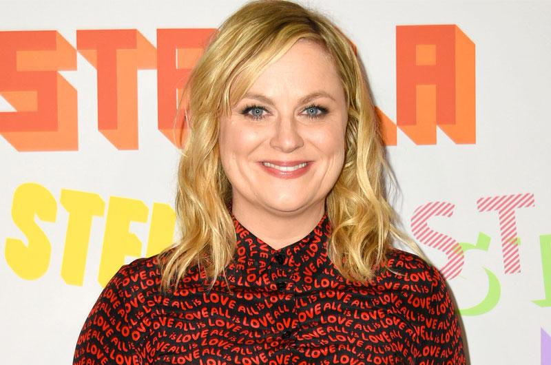 Netflixオリジナル映画『Wine Country』で、エイミー・ポーラーが初監督